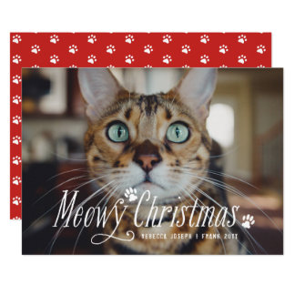 Cute Meowy Christmas Holiday Modern Cat Photo Card
