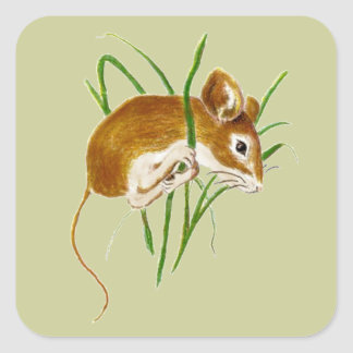 Cute Mice,Mouse Watercolor Animal Nature Square Sticker