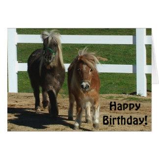 Cute Miniature Horse Birthday Card