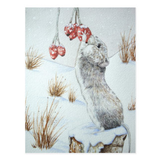 Cute mouse and red berries snow scene wildlife art post card