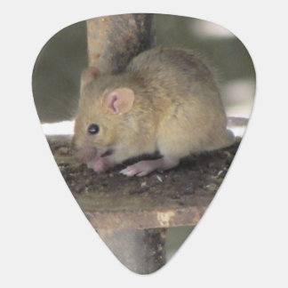 Cute Mouse Sneaking a Meal Guitar Pick