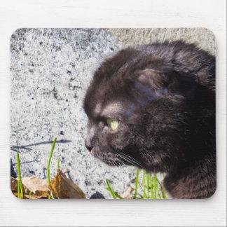 Cute Munchkin Cat Mouse Pad