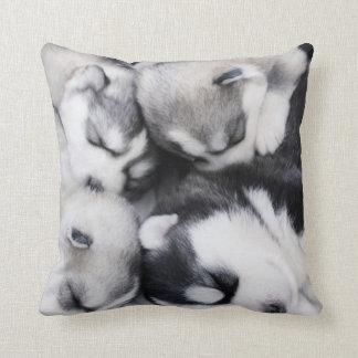 cute n cuddly husky pups pillow
