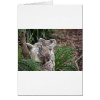 Cute Nature Jungle Tree Safari Koala Animals Bear Greeting Card