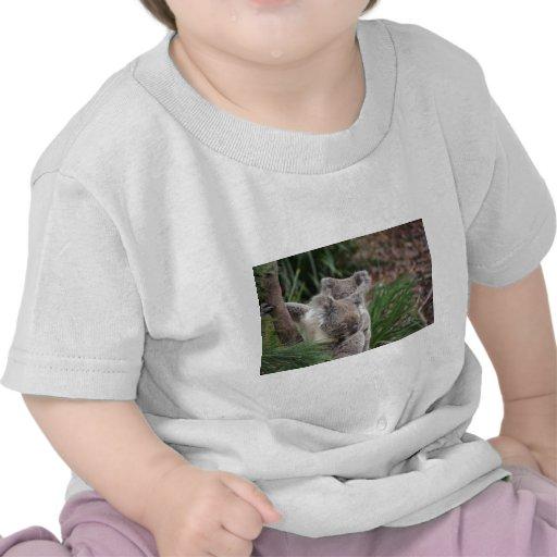 Cute Nature Jungle Tree Safari Koala Animals Bear T-shirt