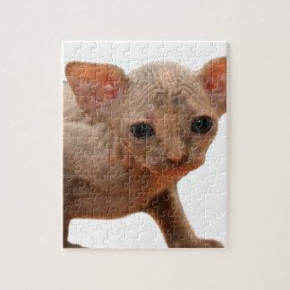 Cute newborn sphynx kitten jigsaw puzzle