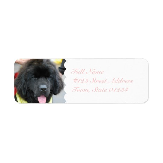 Cute Newfoundland Mailing Labels
