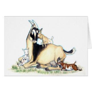 Cute Nigerian Dwarf Goat and Kids Card