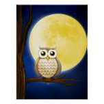 Cute Night Wise Owl   Poster