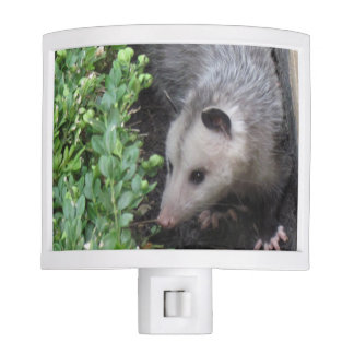 Cute Opossum Night Light