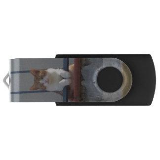 Cute orange and white cat USB flash drive