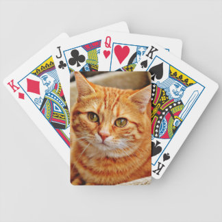 Cute Orange Cat Bicycle Playing Cards