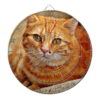 Cute Orange Cat Dartboard