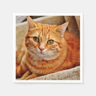 Cute Orange Cat Disposable Napkin