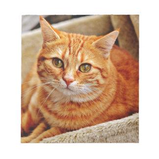 Cute Orange Cat Notepad