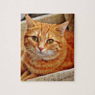 Cute Orange Cat Puzzles
