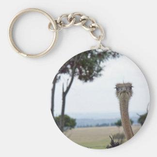 Cute Ostrich Basic Round Button Keychain