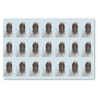 Cute Otter Face Nature Photo Tissue Paper