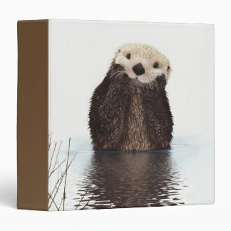 Cute Otter Wildlife Image 3 Ring Binder