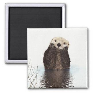 Cute Otter Wildlife Image Magnet