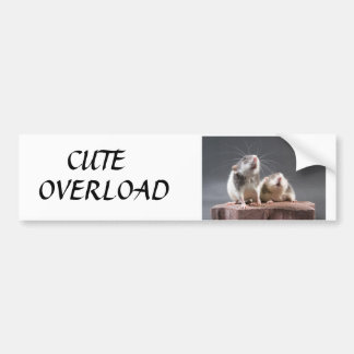 cute overload bumper sticker