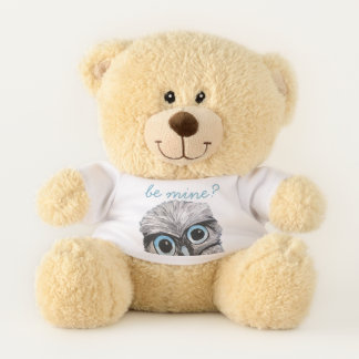 Cute Owl Be Mine Valentine Teddy Bear