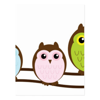 Cute Owl Family Postcard