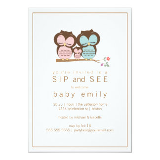 Cute Owl Family Sip and See Baby Greet Invitation