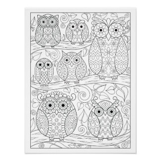 Cute Owls Coloring Poster - Owls on Branches