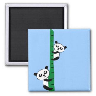 Cute Pandas Magnet