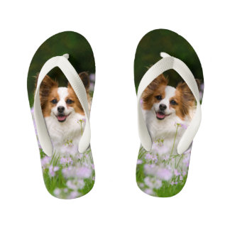Cute Papillon Spaniel Head Photo for Dog Lovers -- Kid's Flip Flops