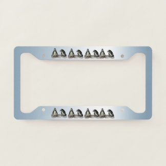 Cute Penguin Birds Blue License Plate Frame