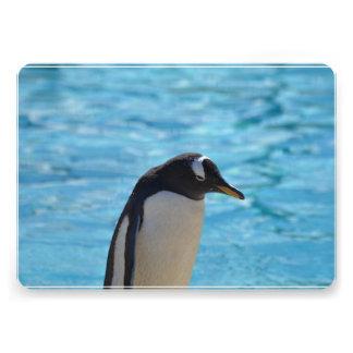 Cute Penguin Cards