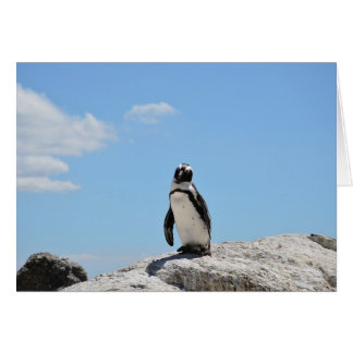 Cute Penguin Keeping in Touch Blank Card