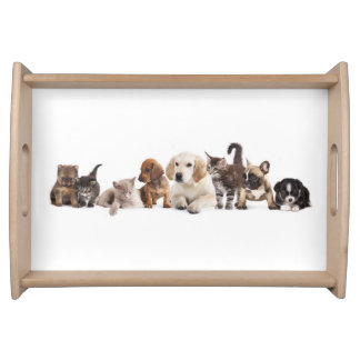 Cute Pet Panorama Serving Tray