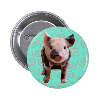 Cute Pig - Blue & Pink Swirls 2 Inch Round Button