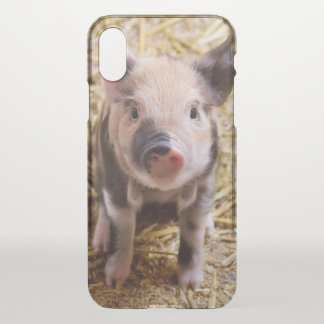 Cute Piglet iphone x case