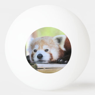 Cute Ping Pong Ball