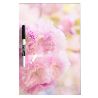 Cute pink cherry blossoms of Japan Dry-Erase Boards