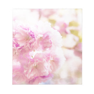 Cute pink cherry blossoms of Japan Notepads