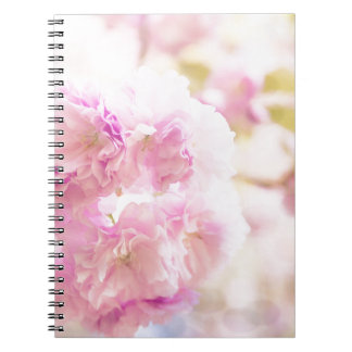 Cute pink cherry blossoms of Japan Spiral Note Books