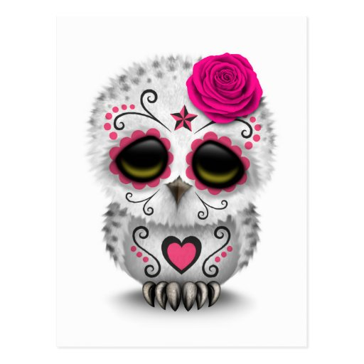 Cute Pink Day of the Dead Sugar Skull Owl White Postcards