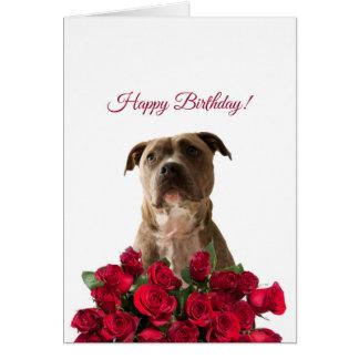 Cute Pit bull Dog Roses Happy Birthday Card