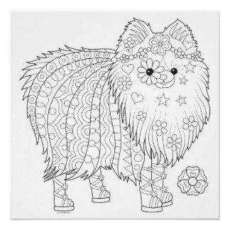 Cute Pomeranian Coloring Poster - Colorable Poster