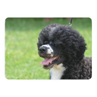 Cute Portuguese Water Dog 5x7 Paper Invitation Card