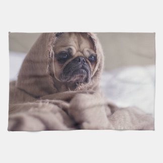 cute pug!! Cutest Pug You have ever seen! Kitchen Towels