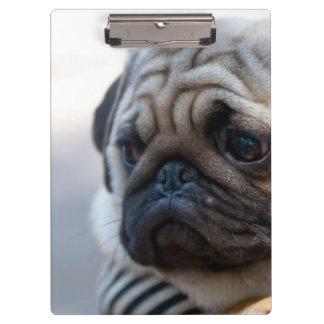 Cute Pug Face Closeup Clipboard