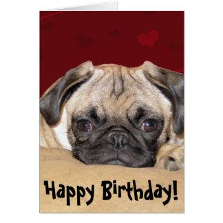 Cute Pug Puppy Birthday Wish Greeting Card