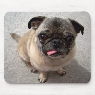Cute Pug Puppy Dog Sticking Tongue Out Mousepad