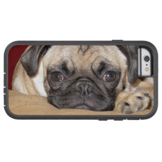 Cute Pug Puppy Tough Xtreme iPhone 6 Case